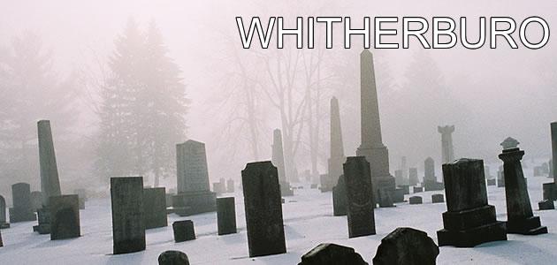whitherburo_landscape
